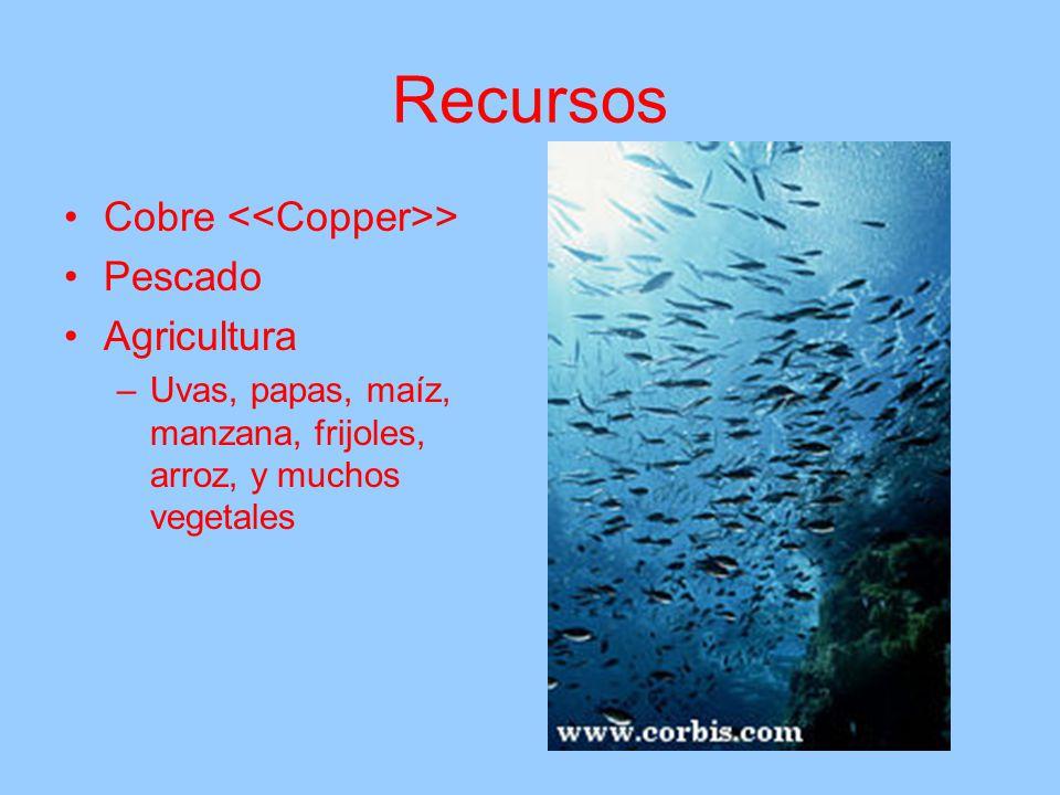 Recursos Cobre <<Copper>> Pescado Agricultura