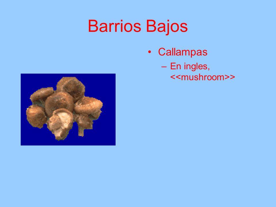 Barrios Bajos Callampas En ingles, <<mushroom>>