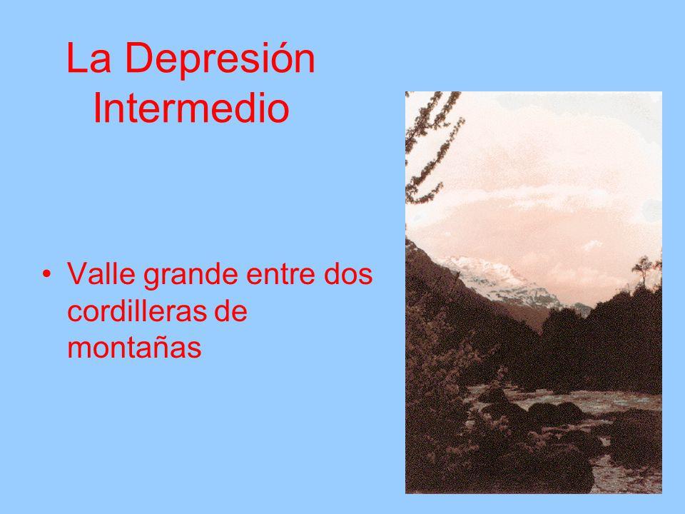 La Depresión Intermedio