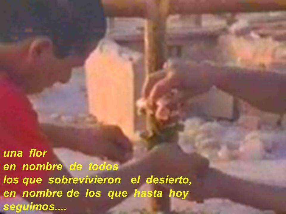 una flor en nombre de todos. los que sobrevivieron el desierto, en nombre de los que hasta hoy.