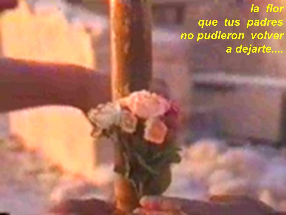 la flor que tus padres no pudieron volver a dejarte....