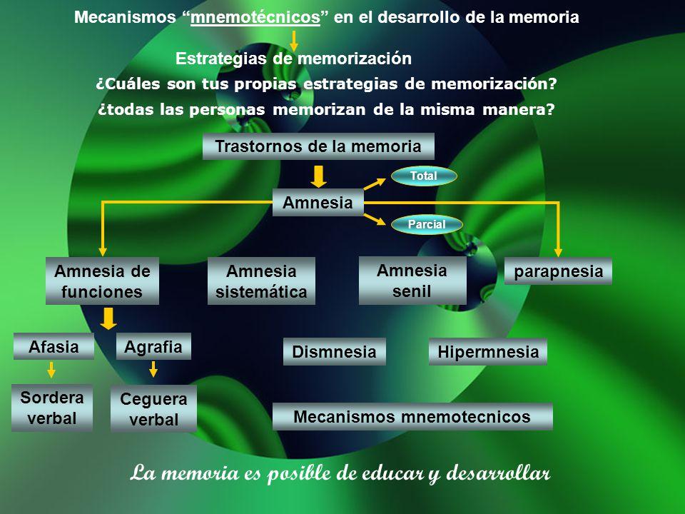 La memoria es posible de educar y desarrollar