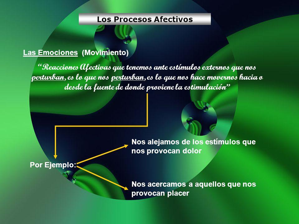 Los Procesos Afectivos
