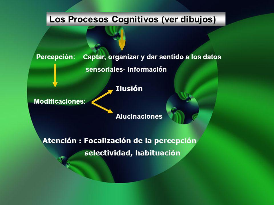 Los Procesos Cognitivos (ver dibujos)