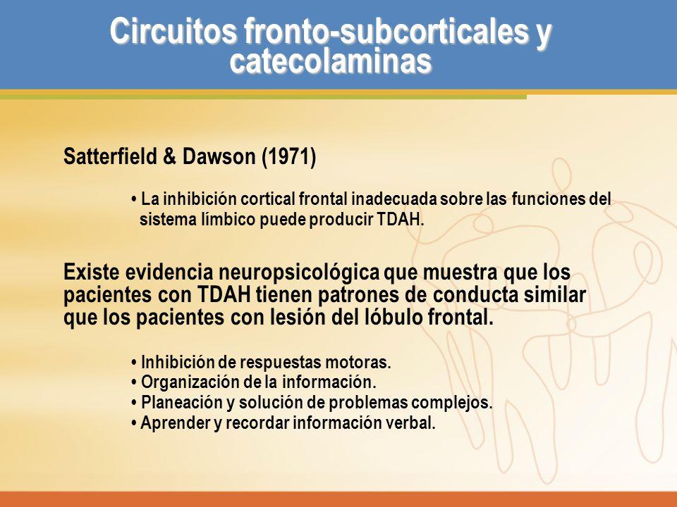 Circuitos fronto-subcorticales y catecolaminas