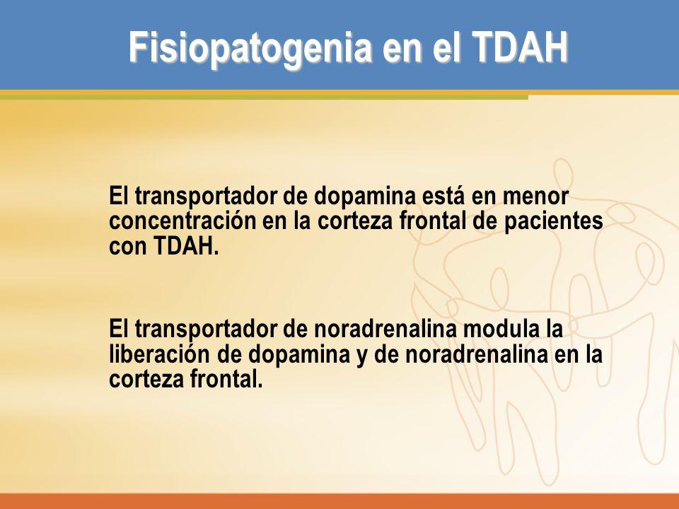 Fisiopatogenia en el TDAH