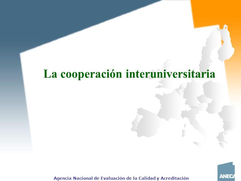La cooperación interuniversitaria
