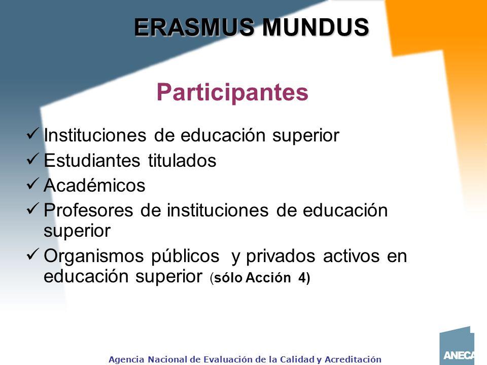 ERASMUS MUNDUS Participantes
