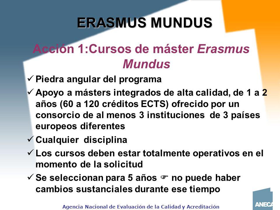 Acción 1:Cursos de máster Erasmus Mundus