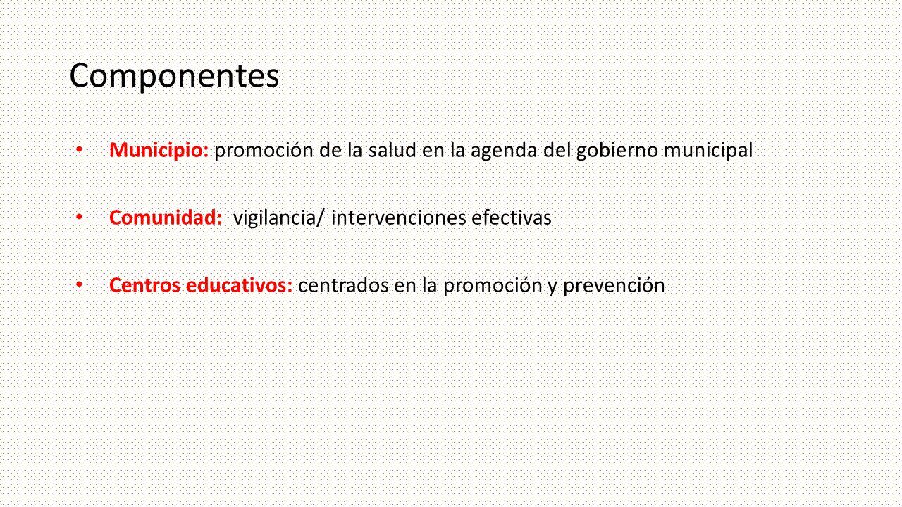 Componentes Municipio: promoción de la salud en la agenda del gobierno municipal. Comunidad: vigilancia/ intervenciones efectivas.