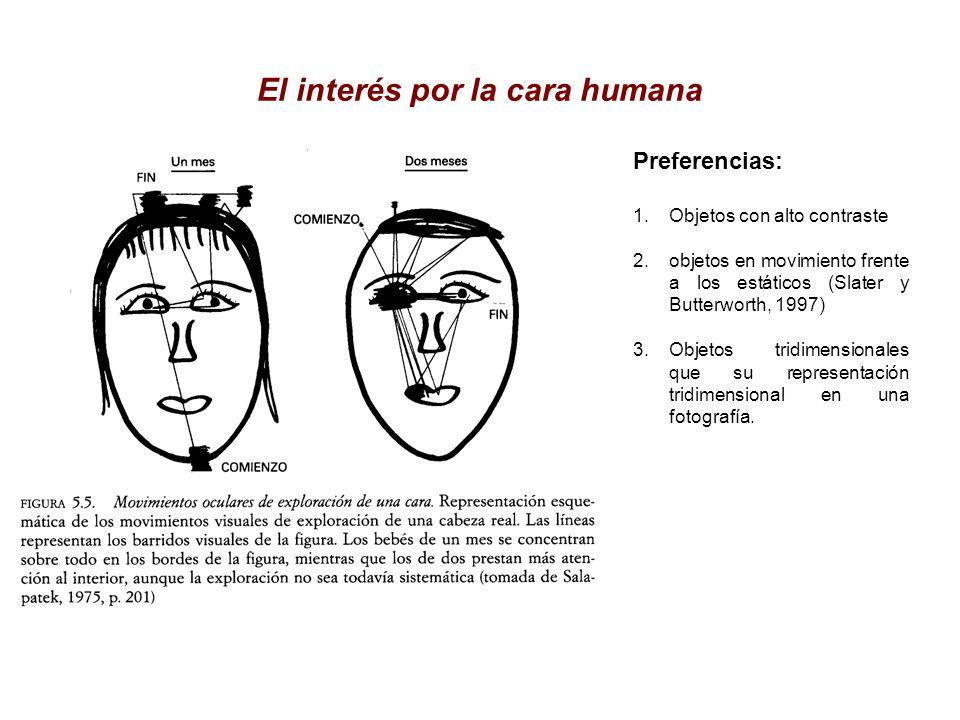 El interés por la cara humana
