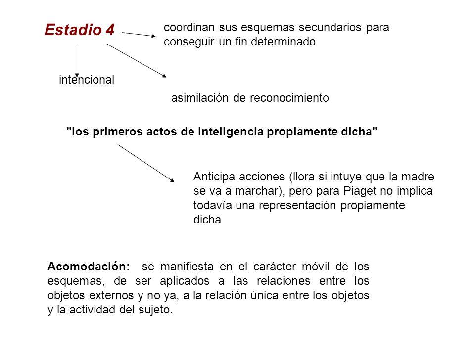 Estadio 4 coordinan sus esquemas secundarios para conseguir un fin determinado. intencional. asimilación de reconocimiento.
