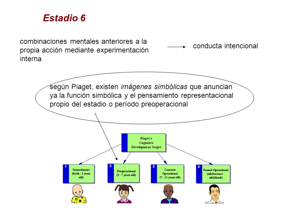 Estadio 6 combinaciones mentales anteriores a la propia acción mediante experimentación interna. conducta intencional.