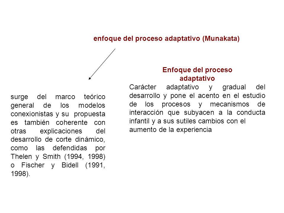 enfoque del proceso adaptativo (Munakata)