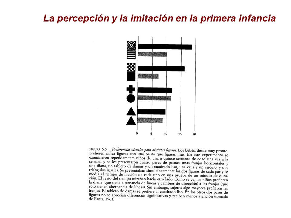 La percepción y la imitación en la primera infancia