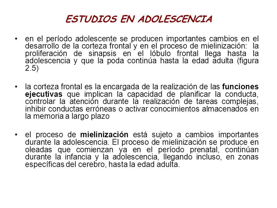 ESTUDIOS EN ADOLESCENCIA