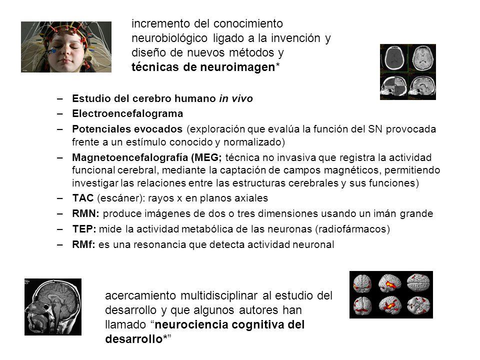 técnicas de neuroimagen*