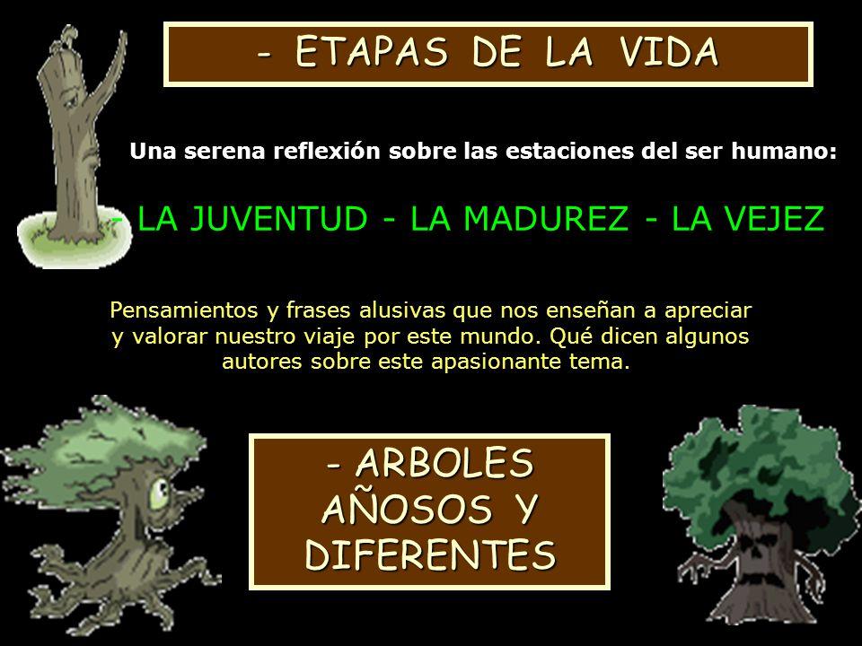 - ETAPAS DE LA VIDA ARBOLES AÑOSOS Y DIFERENTES