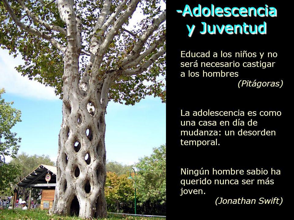 -Adolescencia y Juventud