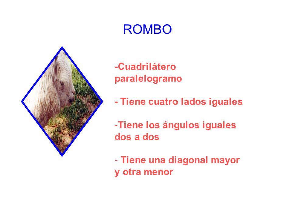 ROMBO -Cuadrilátero paralelogramo - Tiene cuatro lados iguales
