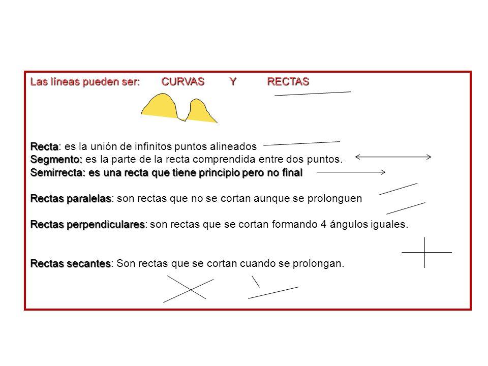 Las líneas pueden ser: CURVAS Y RECTAS