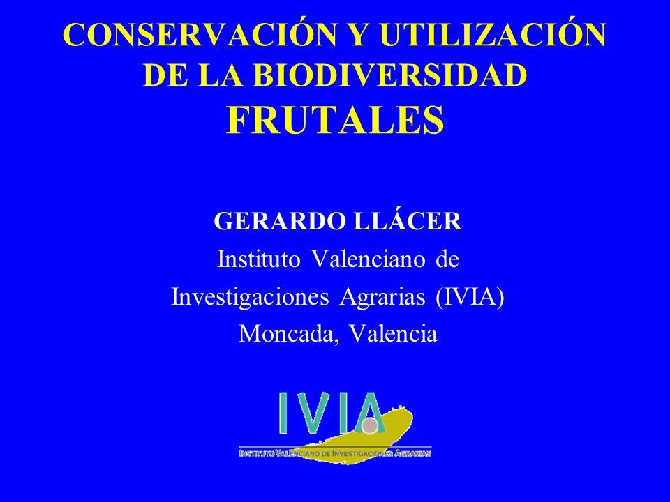 CONSERVACIÓN Y UTILIZACIÓN DE LA BIODIVERSIDAD FRUTALES