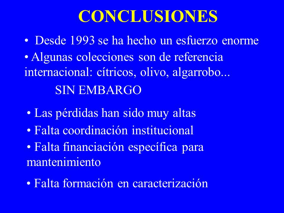 CONCLUSIONES Desde 1993 se ha hecho un esfuerzo enorme