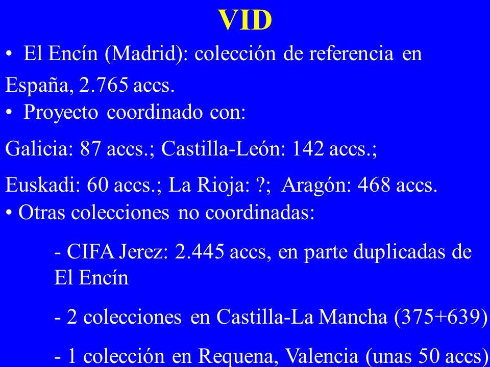 VID El Encín (Madrid): colección de referencia en España, 2.765 accs.