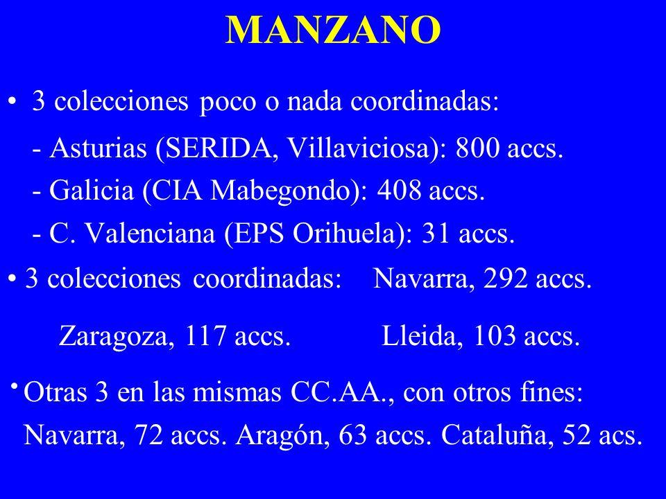 MANZANO 3 colecciones poco o nada coordinadas:
