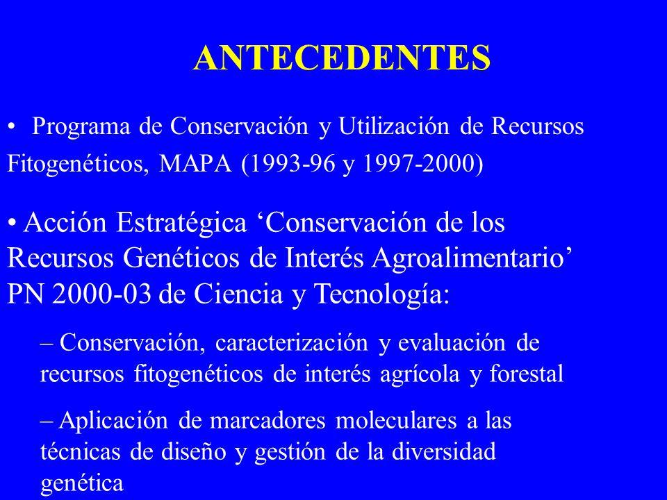 ANTECEDENTES Programa de Conservación y Utilización de Recursos. Fitogenéticos, MAPA (1993-96 y 1997-2000)