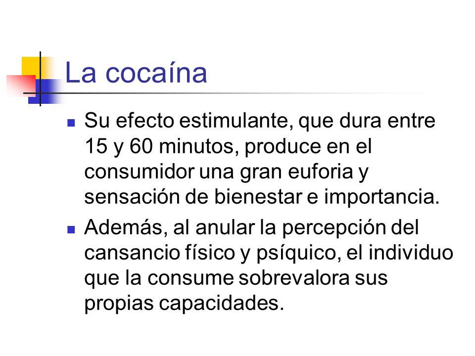 La cocaína Su efecto estimulante, que dura entre 15 y 60 minutos, produce en el consumidor una gran euforia y sensación de bienestar e importancia.