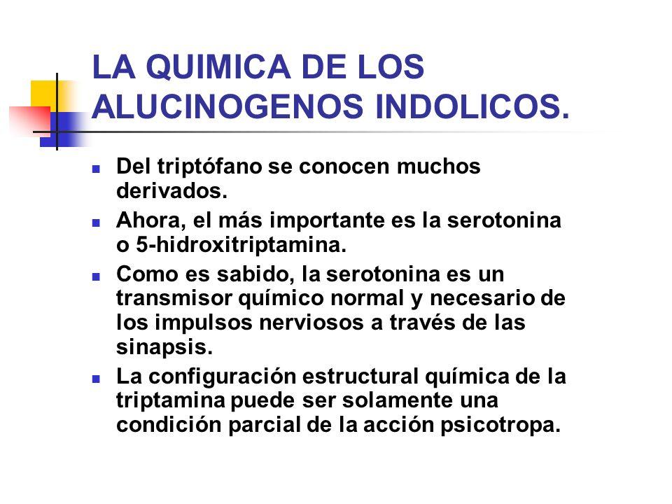 LA QUIMICA DE LOS ALUCINOGENOS INDOLICOS.