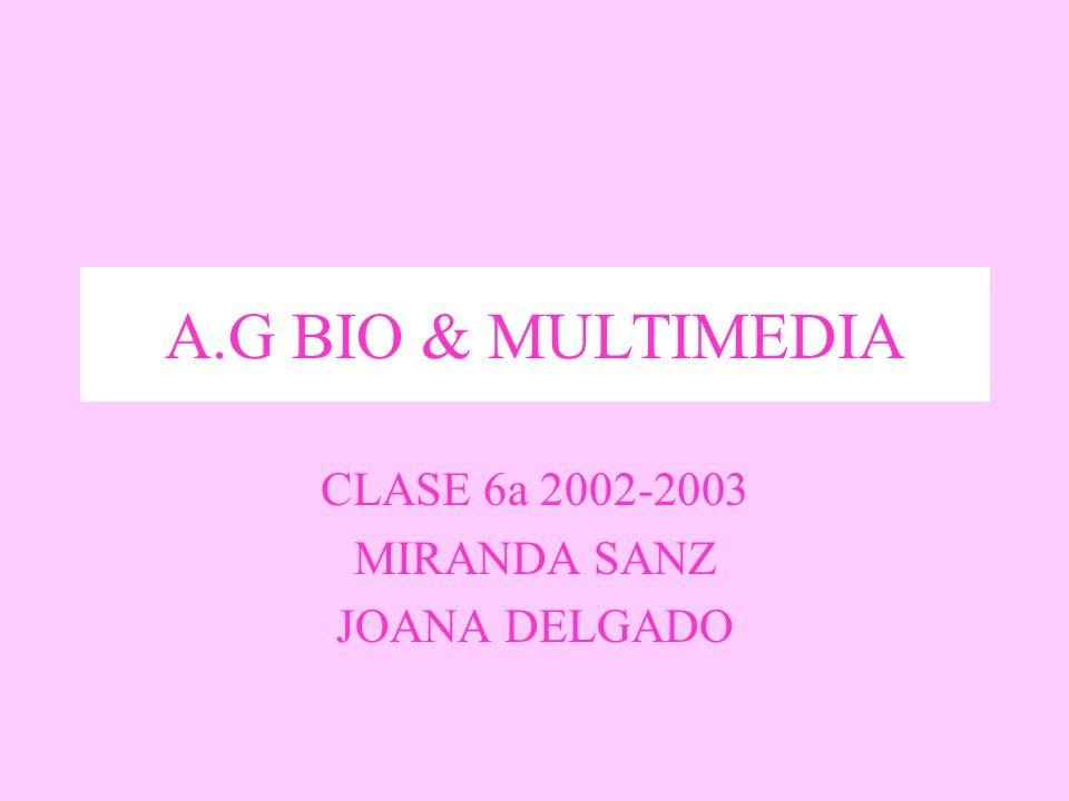 CLASE 6a 2002-2003 MIRANDA SANZ JOANA DELGADO