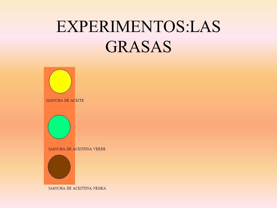 EXPERIMENTOS:LAS GRASAS