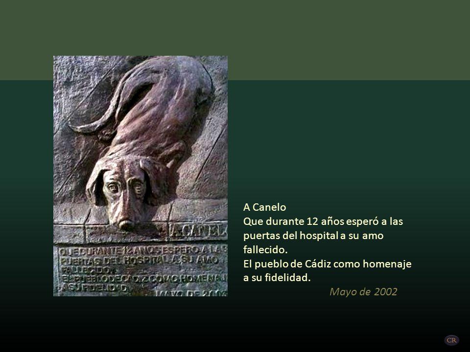 A Canelo Que durante 12 años esperó a las puertas del hospital a su amo fallecido. El pueblo de Cádiz como homenaje a su fidelidad.