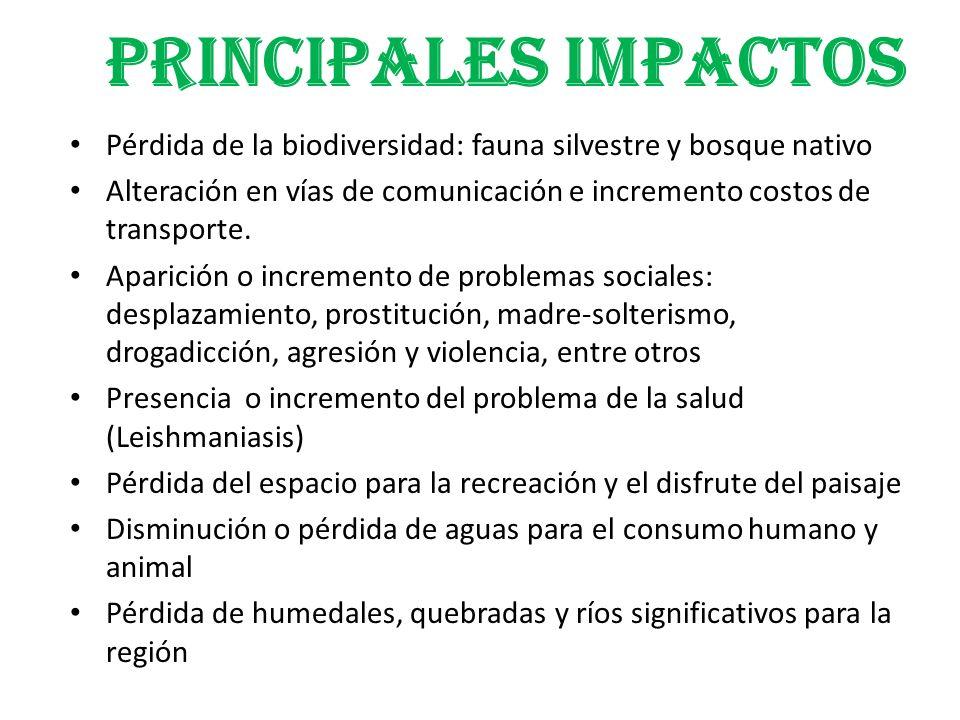 PRINCIPALES IMPACTOS Pérdida de la biodiversidad: fauna silvestre y bosque nativo.