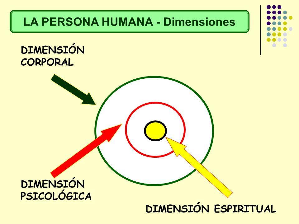 LA PERSONA HUMANA - Dimensiones