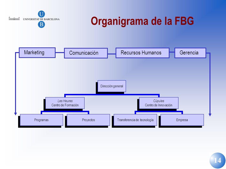 Organigrama de la FBG Marketing Comunicación Recursos Humanos Gerencia