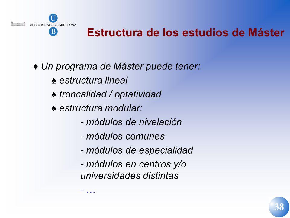 Estructura de los estudios de Máster