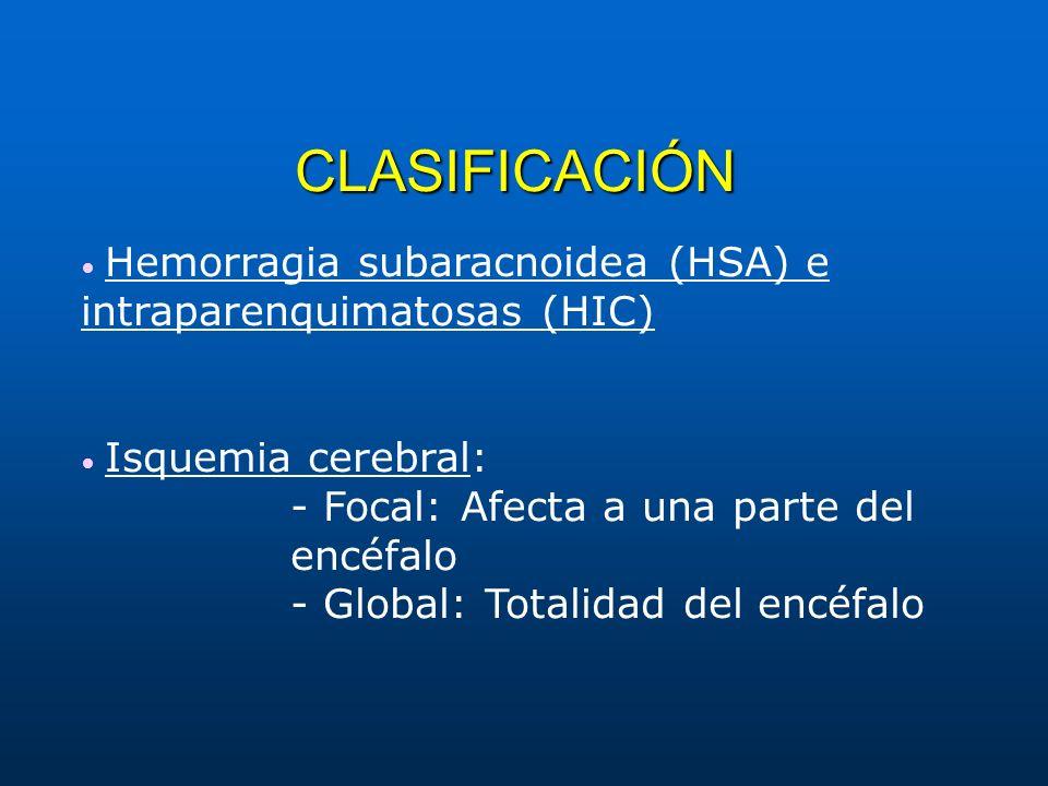 CLASIFICACIÓN - Focal: Afecta a una parte del encéfalo