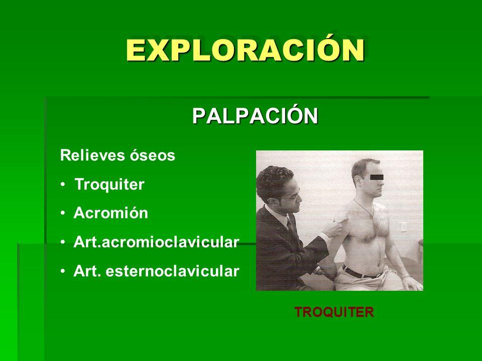 EXPLORACIÓN PALPACIÓN Relieves óseos Troquiter Acromión