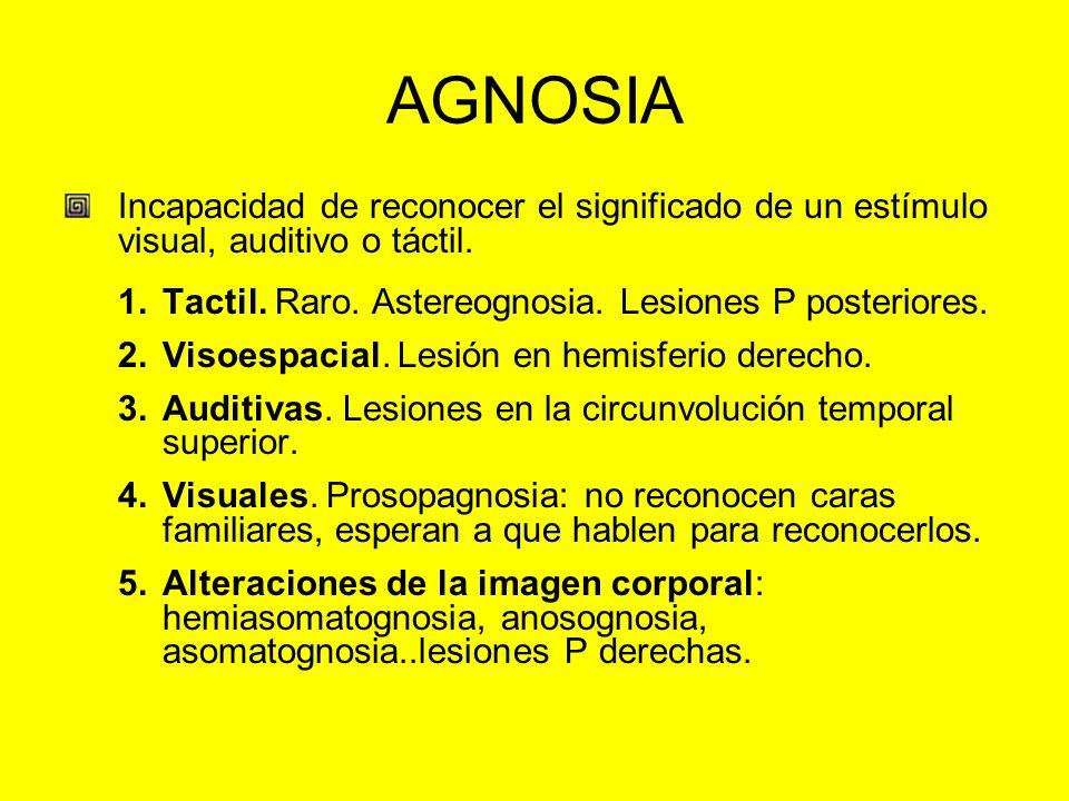 AGNOSIA Incapacidad de reconocer el significado de un estímulo visual, auditivo o táctil. Tactil. Raro. Astereognosia. Lesiones P posteriores.