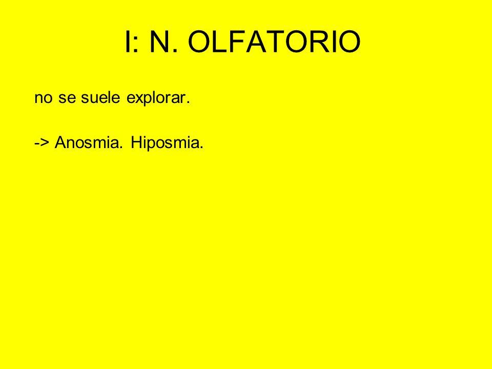 I: N. OLFATORIO no se suele explorar. -> Anosmia. Hiposmia.
