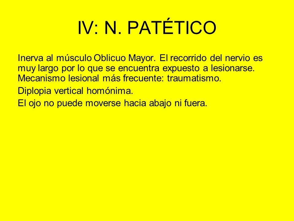 IV: N. PATÉTICO