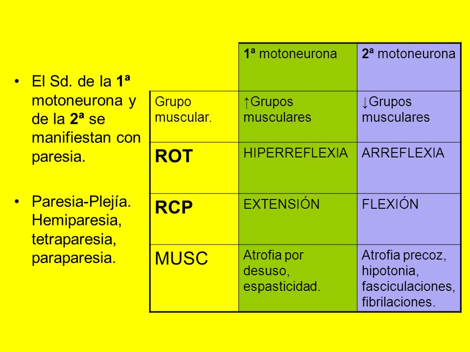 1ª motoneurona 2ª motoneurona. Grupo muscular. ↑Grupos musculares. ↓Grupos musculares. ROT. HIPERREFLEXIA.