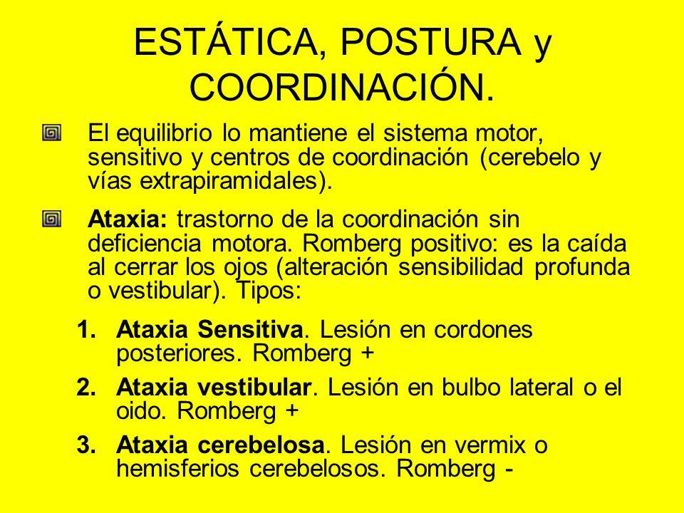 ESTÁTICA, POSTURA y COORDINACIÓN.