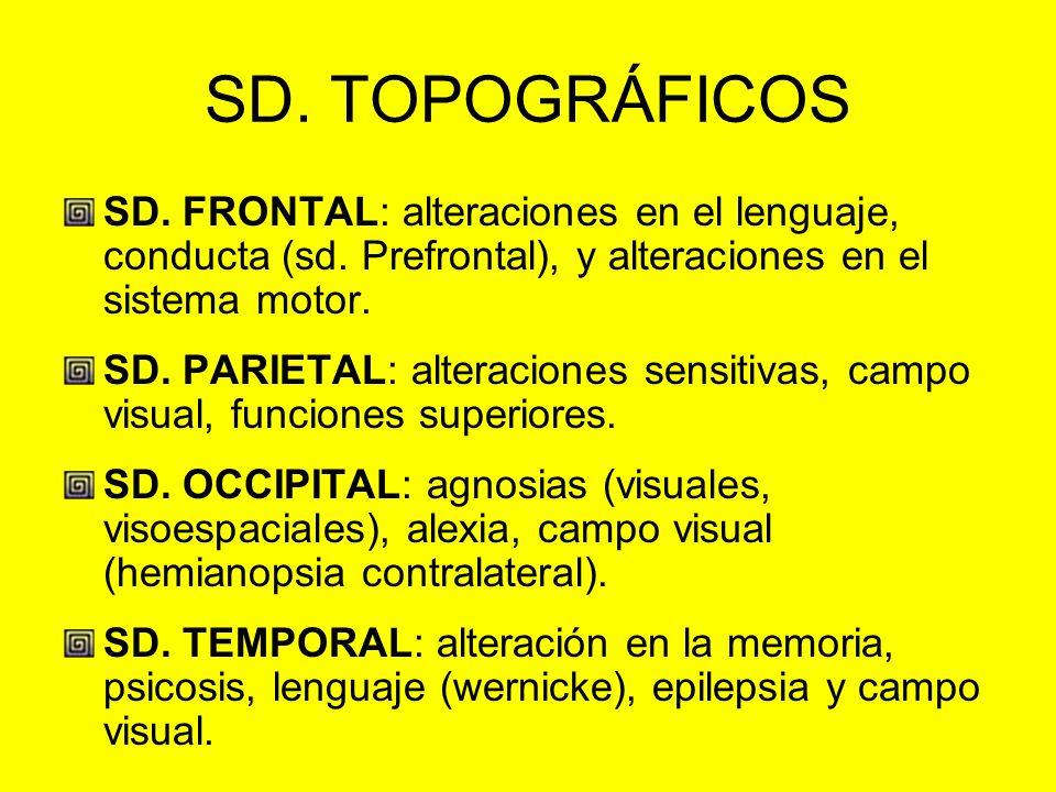 SD. TOPOGRÁFICOS SD. FRONTAL: alteraciones en el lenguaje, conducta (sd. Prefrontal), y alteraciones en el sistema motor.