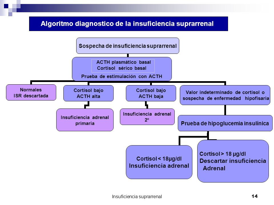 Algoritmo diagnostico de la insuficiencia suprarrenal