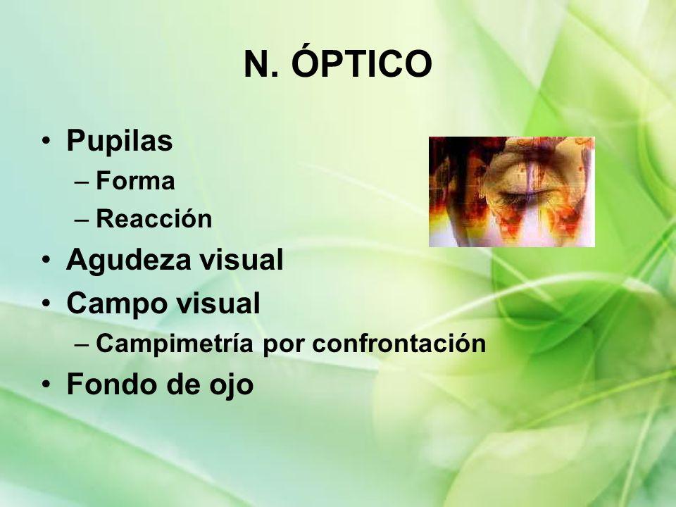 N. ÓPTICO Pupilas Agudeza visual Campo visual Fondo de ojo Forma