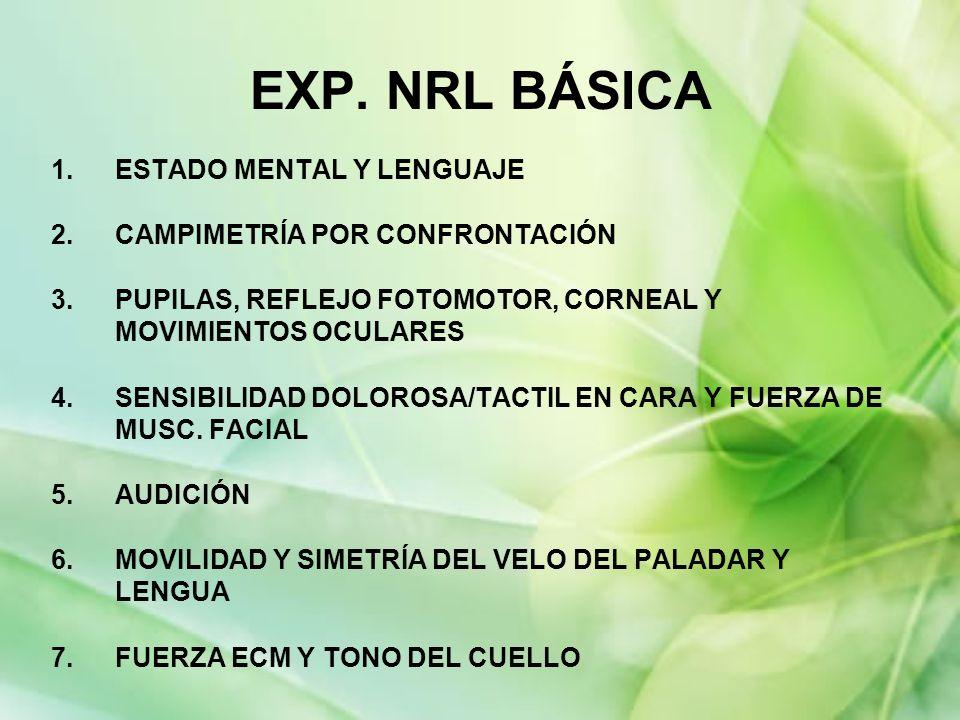 EXP. NRL BÁSICA ESTADO MENTAL Y LENGUAJE CAMPIMETRÍA POR CONFRONTACIÓN